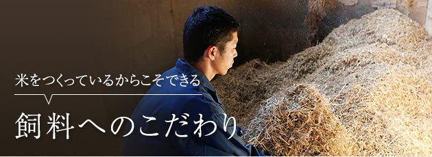 三田ファーム飼料
